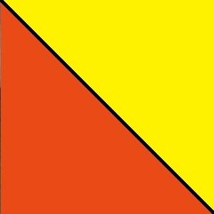 Bicolor amarillo naranja